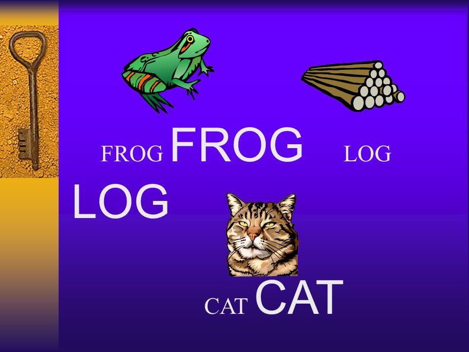FROG FROG LOG LOG CAT
