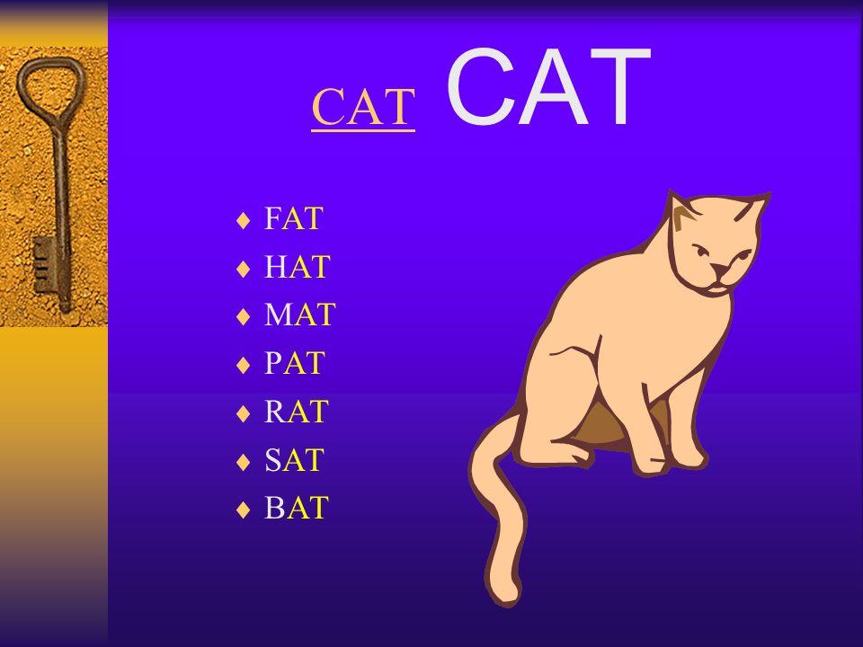 CAT FAT HAT MAT PAT RAT SAT BAT