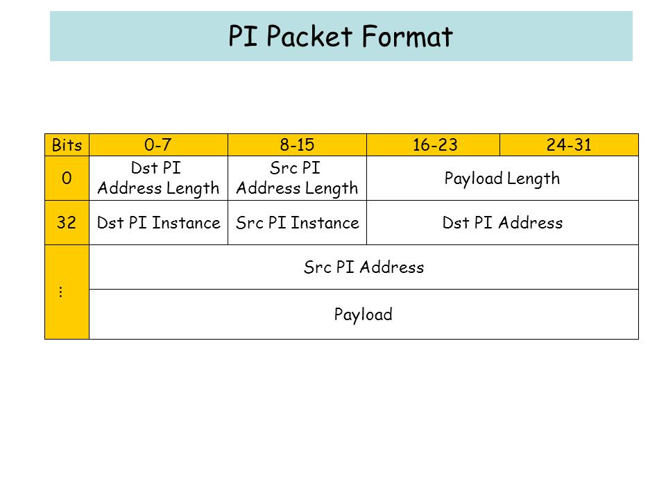 PI Packet Format Bits Dst PI Address Length Src PI Address Length Payload Length Dst PI InstanceSrc PI InstanceDst PI Address...Src PI Address Payload