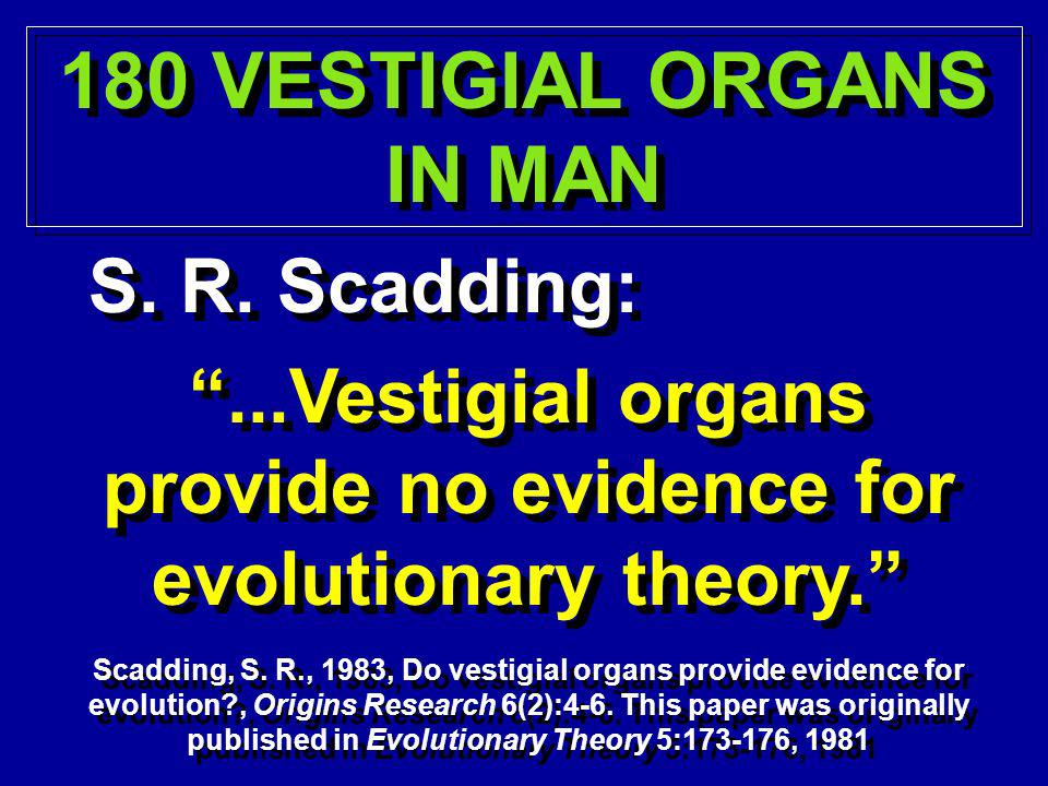180 VESTIGIAL ORGANS IN MAN 180 VESTIGIAL ORGANS IN MAN S. R. Scadding:...Vestigial organs provide no evidence for evolutionary theory. Scadding, S. R