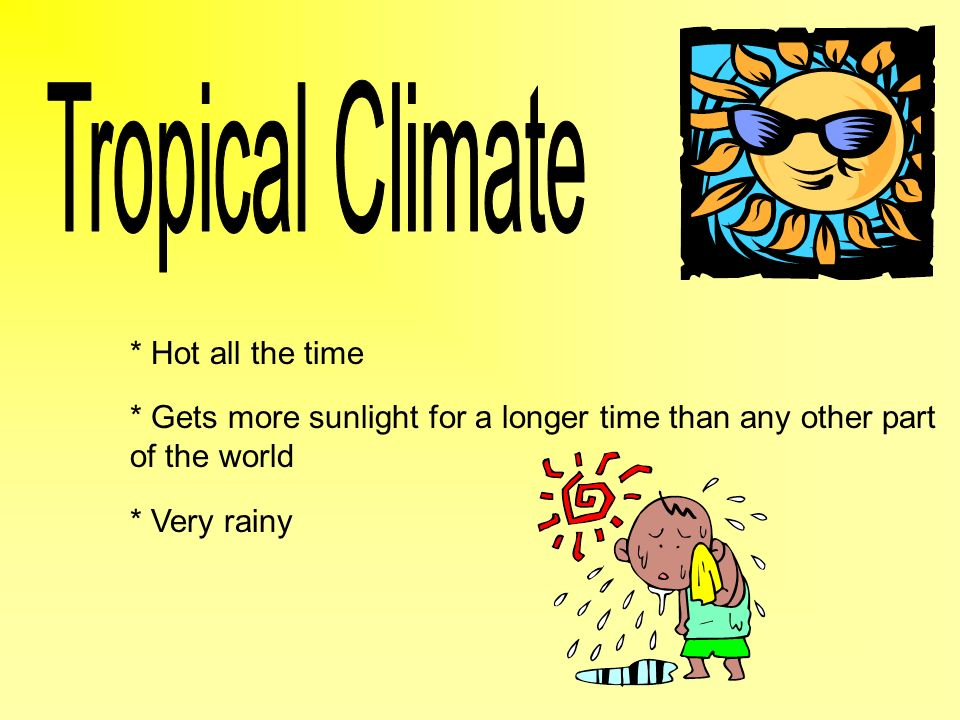 * Hot all the time * Gets more sunlight for a longer time than any other part of the world * Very rainy