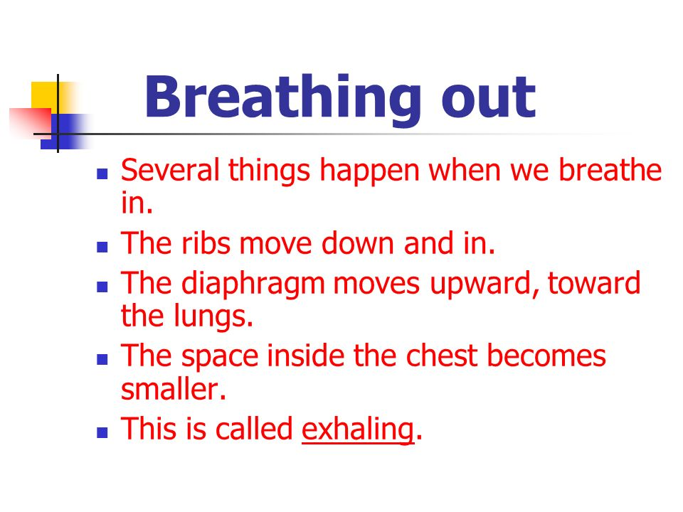 Breathing out Several things happen when we breathe in. The ribs move down and in. The diaphragm moves upward, toward the lungs. The space inside the