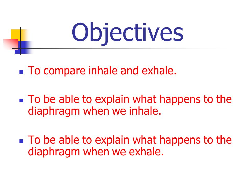 Objectives To compare inhale and exhale. To be able to explain what happens to the diaphragm when we inhale. To be able to explain what happens to the
