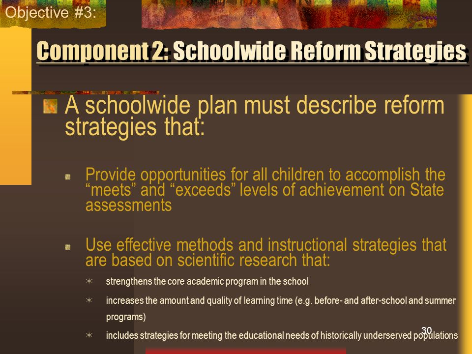 Component 2: Schoolwide Reform Strategies A schoolwide plan must describe reform strategies that: Provide opportunities for all children to accomplish