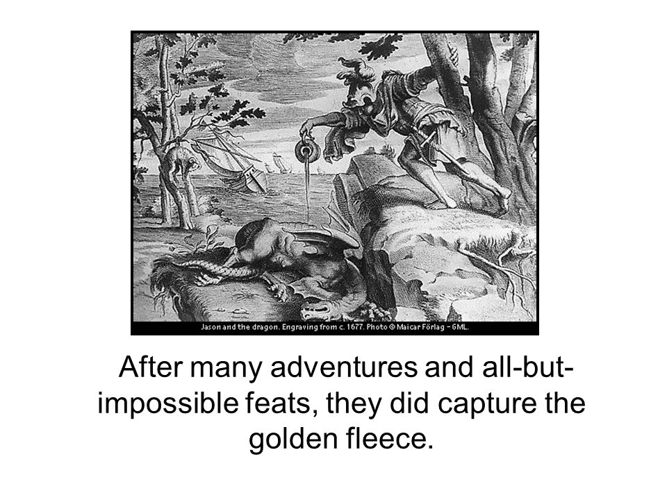 After many adventures and all-but- impossible feats, they did capture the golden fleece.
