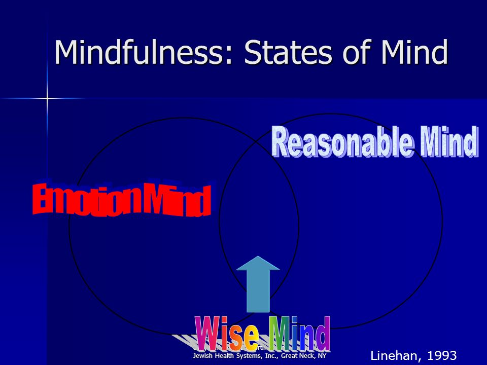 Copyright 2008 by North Shore - Long Island Jewish Health Systems, Inc., Great Neck, NY Mindfulness: States of Mind Linehan, 1993