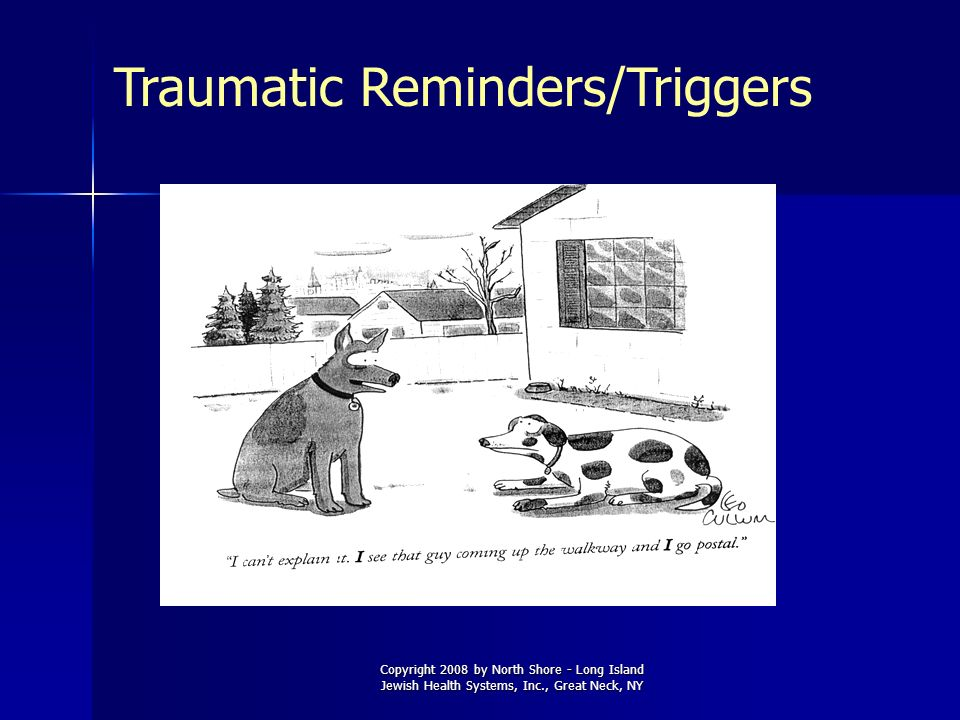 Copyright 2008 by North Shore - Long Island Jewish Health Systems, Inc., Great Neck, NY Traumatic Reminders/Triggers