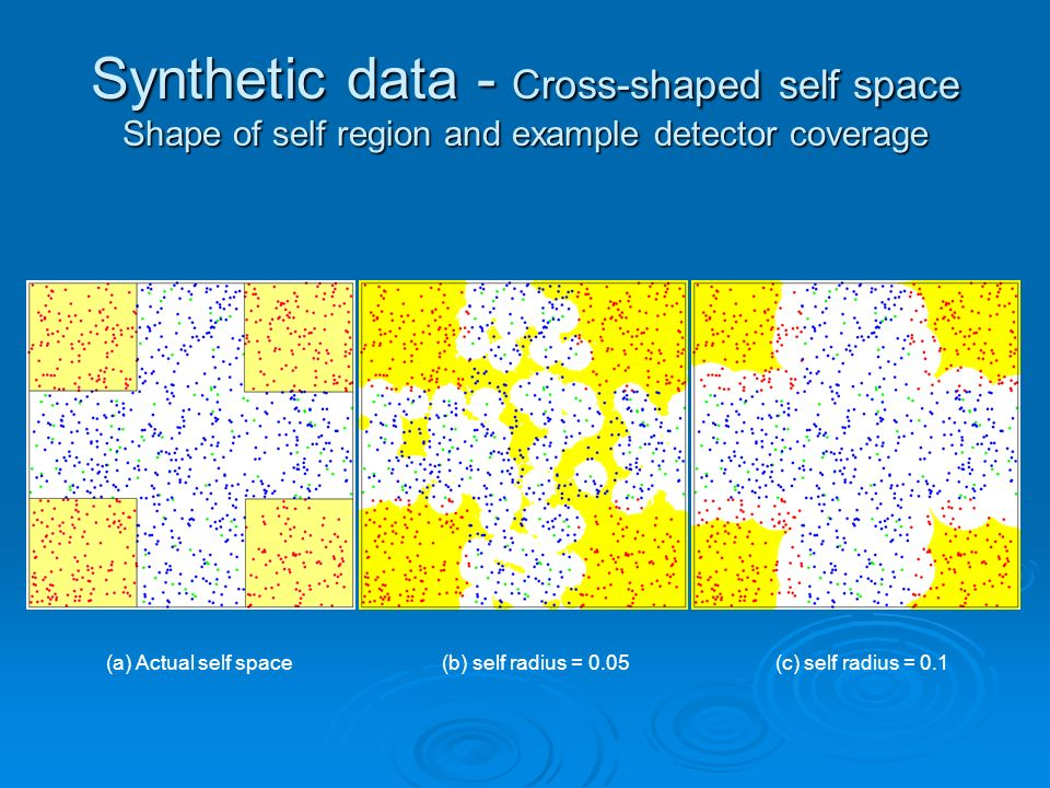 Synthetic data - Cross-shaped self space Shape of self region and example detector coverage (a) Actual self space (b) self radius = 0.05 (c) self radius = 0.1