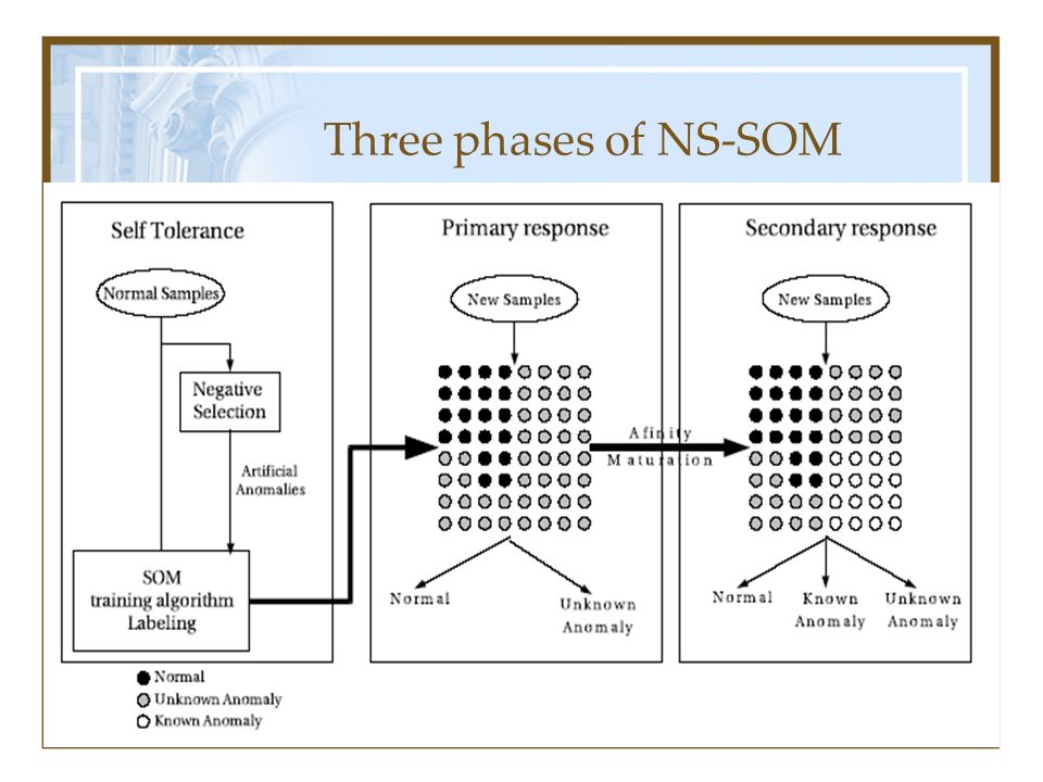 Three phases of NS-SOM
