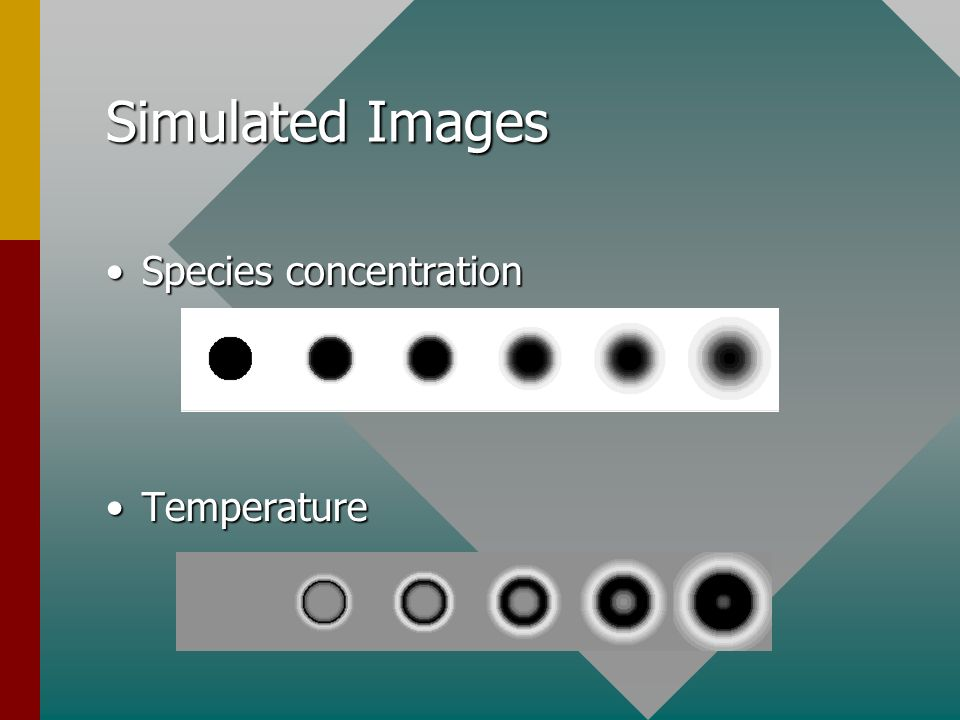 Simulated Images Species concentrationSpecies concentration TemperatureTemperature