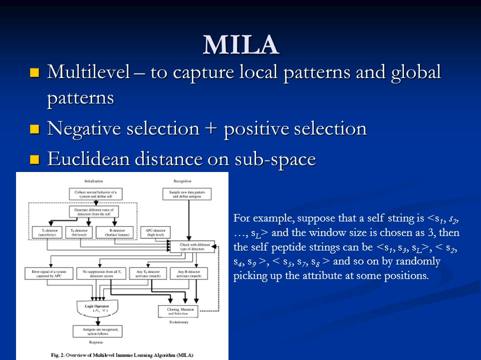 MILA Multilevel – to capture local patterns and global patterns Multilevel – to capture local patterns and global patterns Negative selection + positive selection Negative selection + positive selection Euclidean distance on sub-space Euclidean distance on sub-space For example, suppose that a self string is and the window size is chosen as 3, then the self peptide strings can be,, and so on by randomly picking up the attribute at some positions.