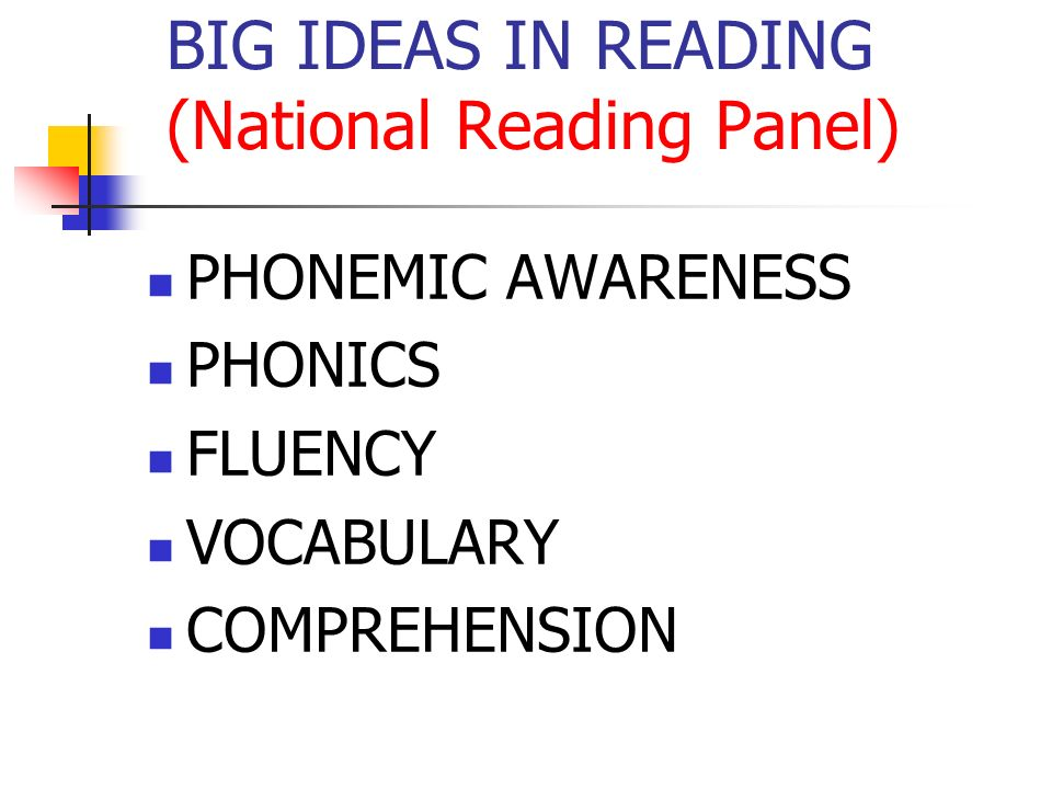 BIG IDEAS IN READING (National Reading Panel) PHONEMIC AWARENESS PHONICS FLUENCY VOCABULARY COMPREHENSION