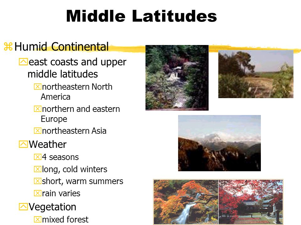 Middle Latitudes zHumid Continental yeast coasts and upper middle latitudes xnortheastern North America xnorthern and eastern Europe xnortheastern Asia yWeather x4 seasons xlong, cold winters xshort, warm summers xrain varies yVegetation xmixed forest