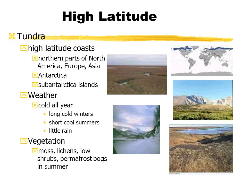 High Latitude zTundra yhigh latitude coasts xnorthern parts of North America, Europe, Asia xAntarctica xsubantarctica islands yWeather xcold all year long cold winters short cool summers little rain yVegetation xmoss, lichens, low shrubs, permafrost bogs in summer