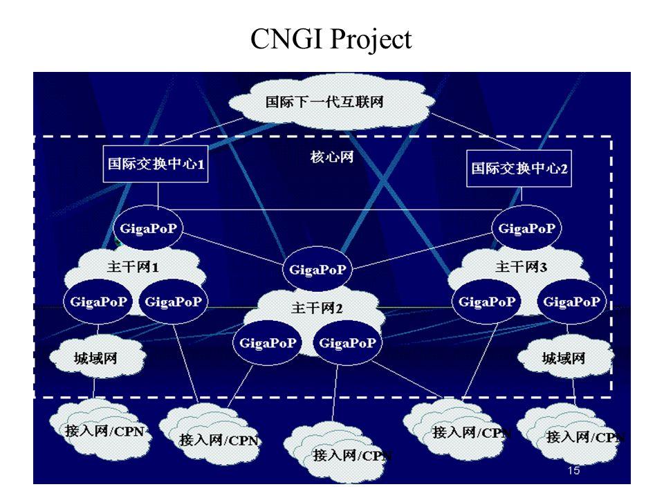 CNGI Project