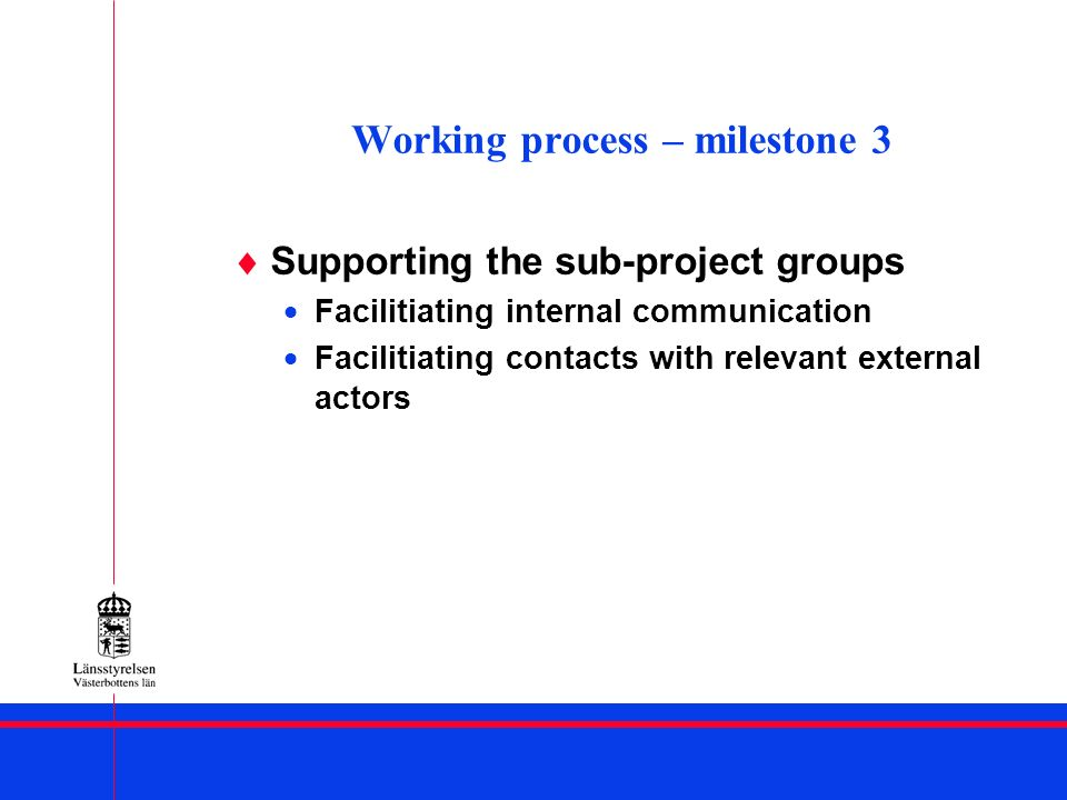 Working process – milestone 3 Supporting the sub-project groups Facilitiating internal communication Facilitiating contacts with relevant external act