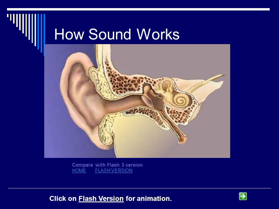 How Sound Works Compare with Flash 3 version HOMEHOME FLASH VERSIONFLASH VERSION Click on Flash Version for animation.