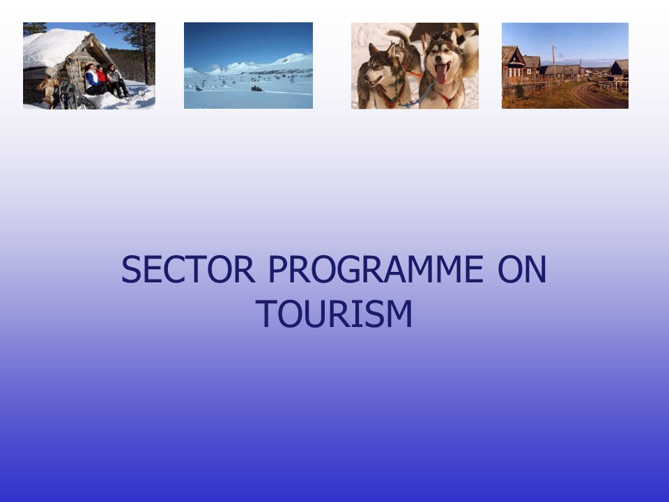 SECTOR PROGRAMME ON TOURISM