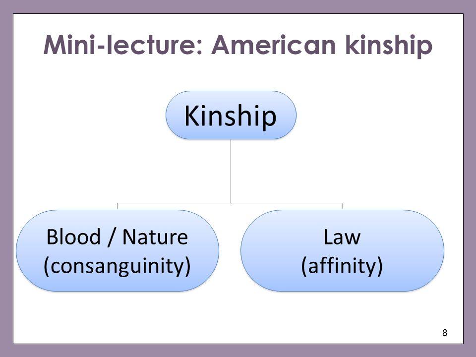 8 Kinship Blood / Nature (consanguinity) Blood / Nature (consanguinity) Law (affinity) Law (affinity) Mini-lecture: American kinship