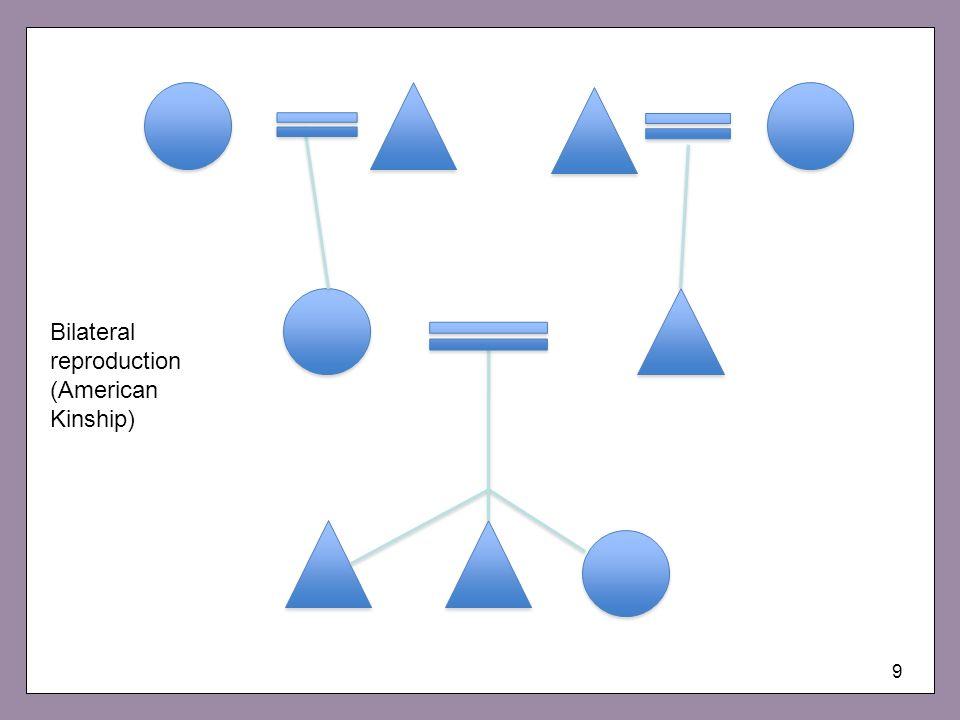 9 Bilateral reproduction (American Kinship)