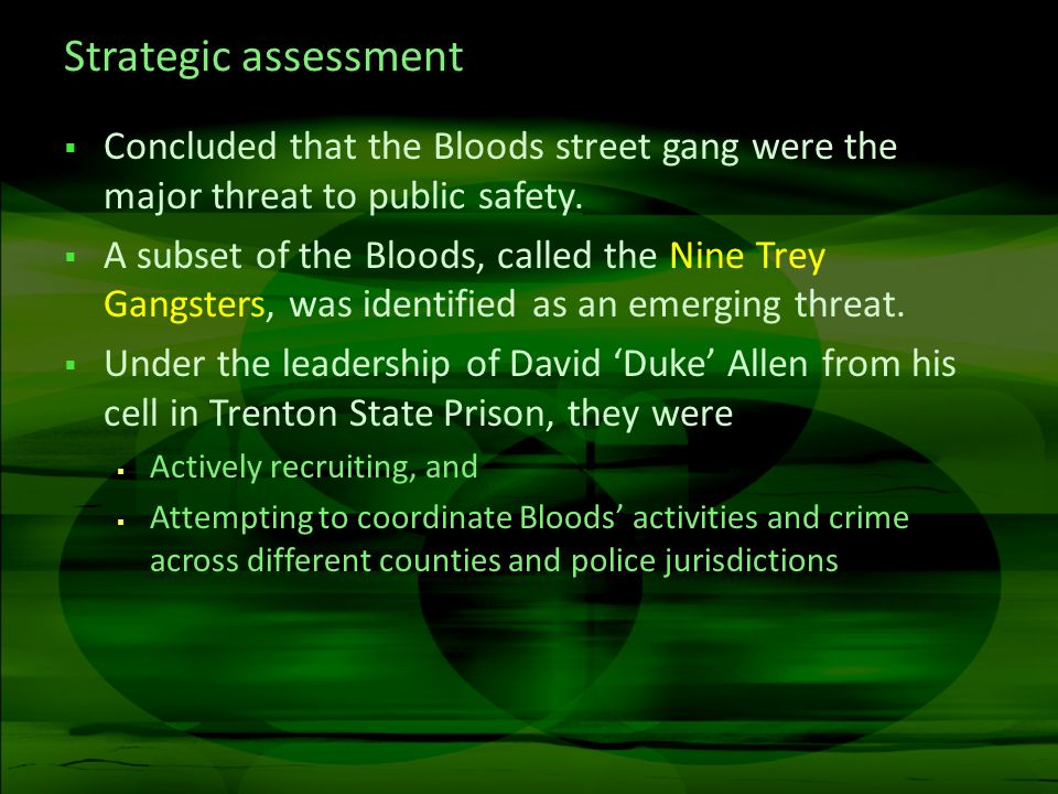 Strategic assessment Concluded that the Bloods street gang were the major threat to public safety.
