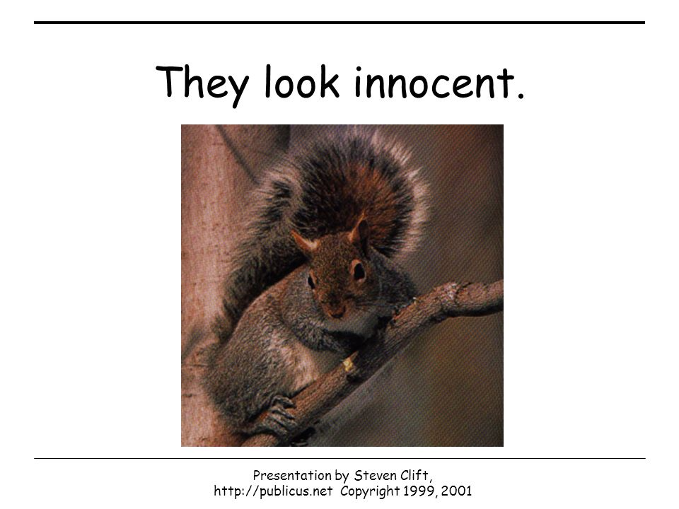 Presentation by Steven Clift, http://publicus.net Copyright 1999, 2001 They look innocent.