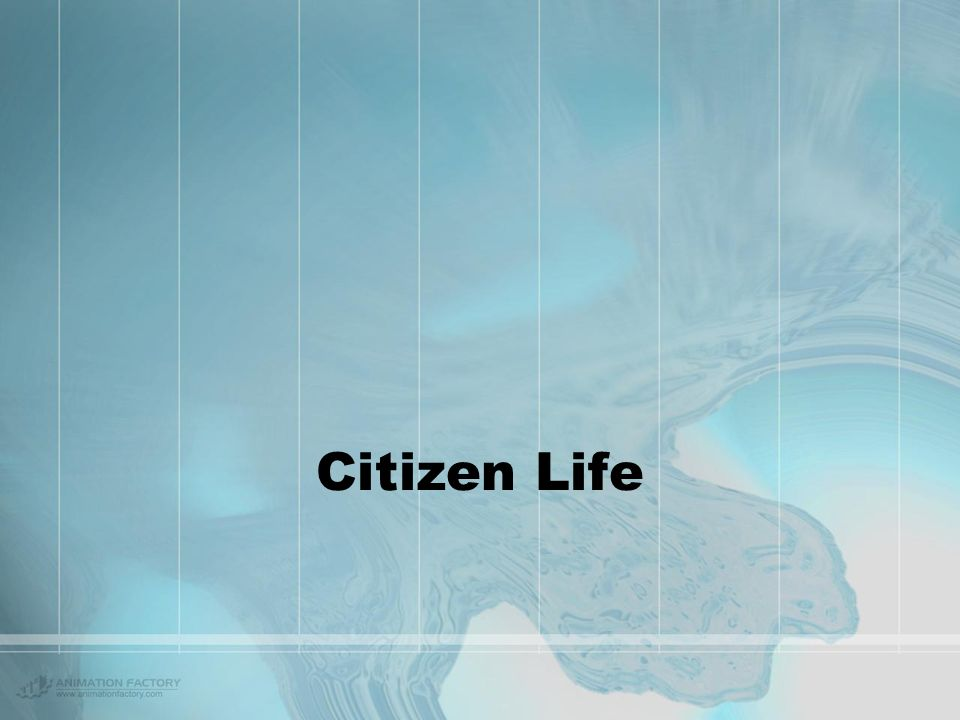 Eye on the e-Citizen Copyright 2002, Steven Clift, Publicus.Net Introduction Questions to consider … What does the e-citizen: –experience? –think? –sa