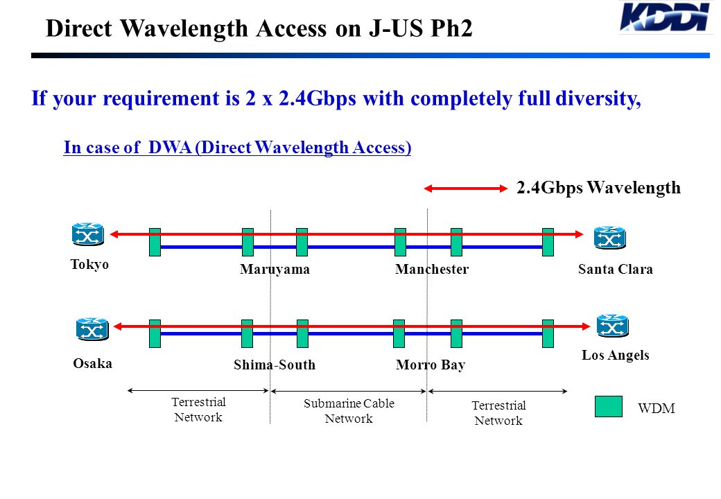 Direct Wavelength Access on J-US Ph2 In case of NPE (Network Protection Equipment) Access If your requirement is 2 x 2.4Gbps with completely full dive