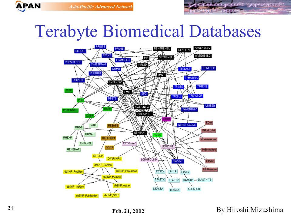 31 Feb. 21, 2002 Terabyte Biomedical Databases By Hiroshi Mizushima