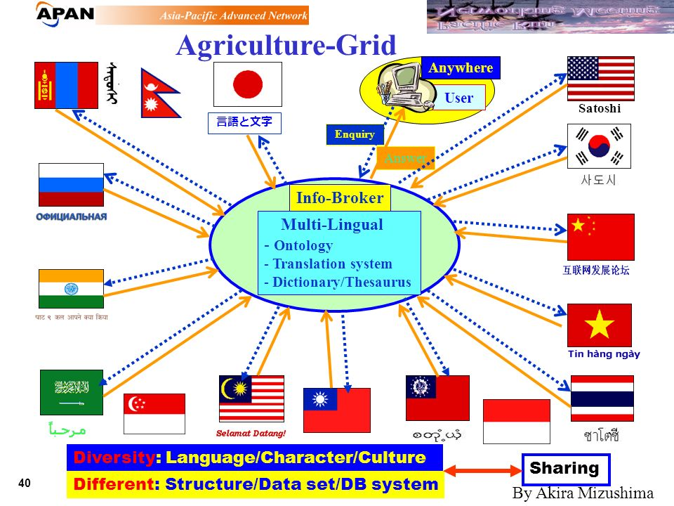 40 Feb. 21, 2002 Enquiry Answer Agriculture-Grid Info-Broker Multi-Lingual - Ontology - Translation system - Dictionary/Thesaurus User Diversity: Lang