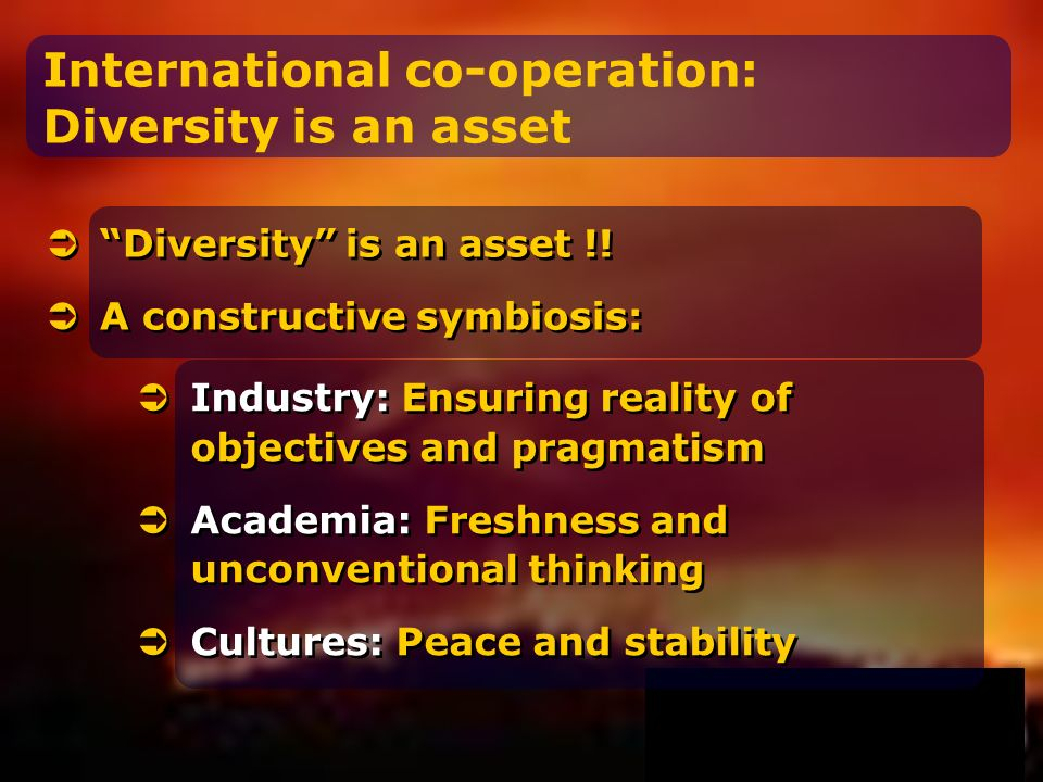 International co-operation: Diversity is an asset Diversity is an asset !.
