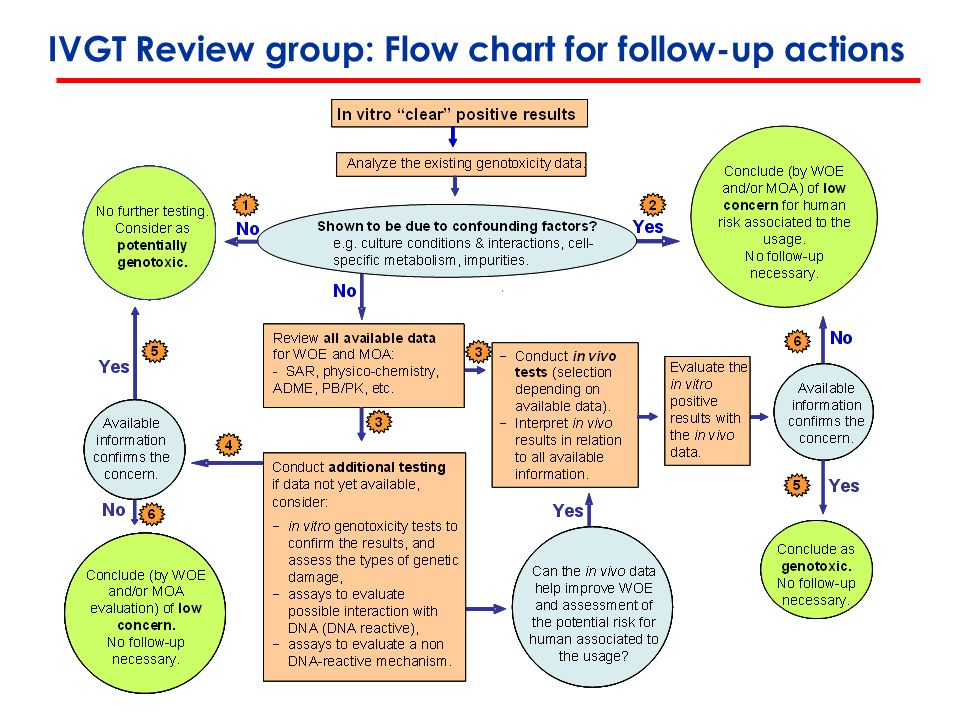 IVGT Review group: Flow chart for follow-up actions