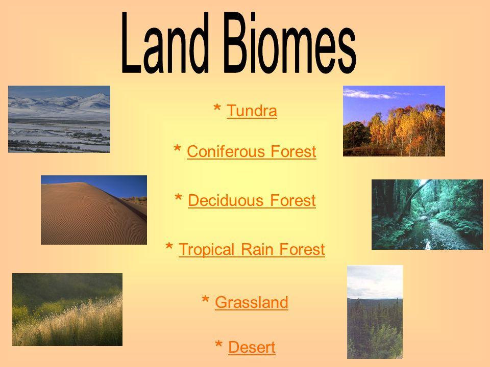 * Tundra Tundra * Coniferous Forest Coniferous Forest * Deciduous Forest Deciduous Forest * Tropical Rain Forest Tropical Rain Forest * Grassland Gras