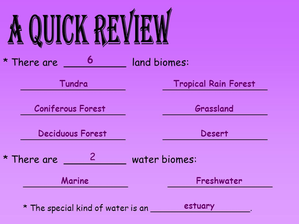 * There are __________ land biomes: 6 ____________________ Tundra Coniferous Forest Deciduous Forest Tropical Rain Forest Grassland Desert * There are