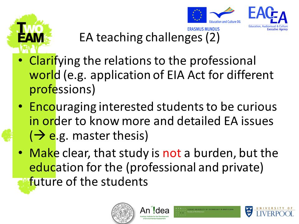 EA teaching challenges (2) Clarifying the relations to the professional world (e.g.