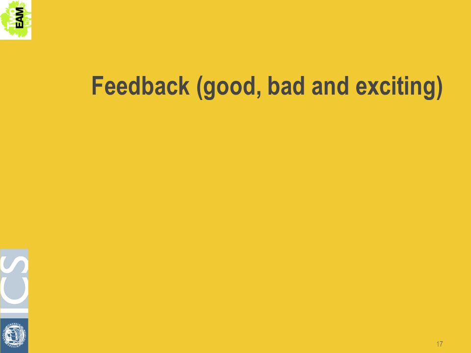 17 Feedback (good, bad and exciting)