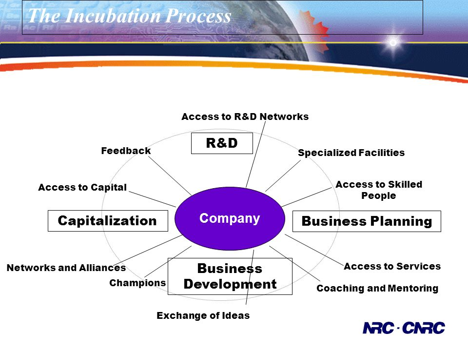 The Incubation Process Access to Services Coaching and Mentoring Networks and Alliances Access to Capital Business Planning Company Access to R&D Networks Specialized Facilities Access to Skilled People Exchange of Ideas Champions Feedback R&D Business Development Capitalization