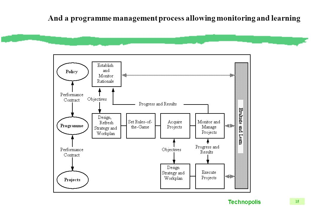 Technopolis 15 And a programme management process allowing monitoring and learning