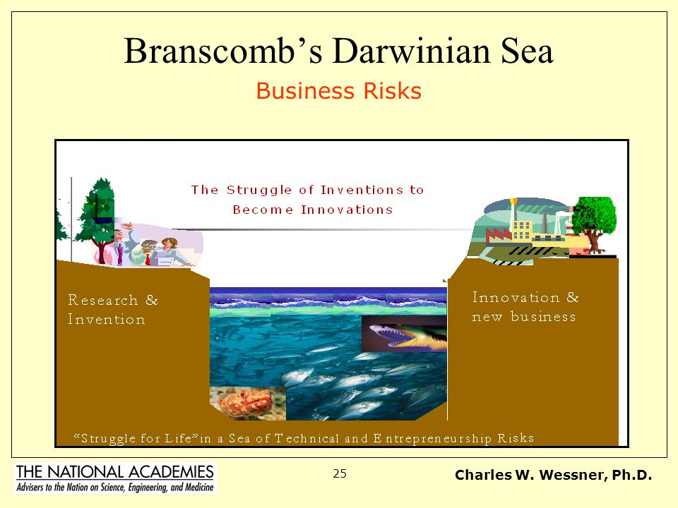 Charles W. Wessner, Ph.D. 25 Branscombs Darwinian Sea Business Risks