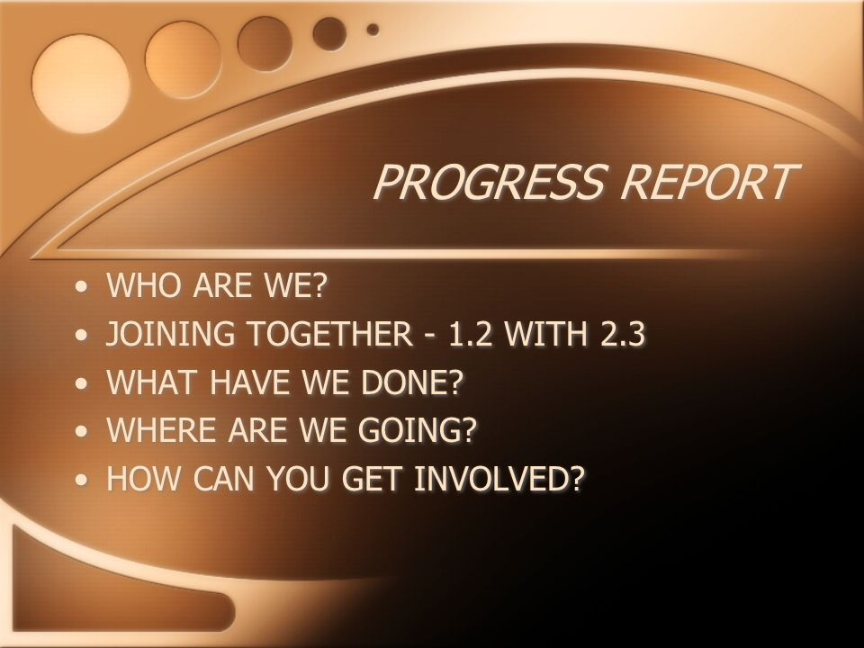 PROGRESS REPORT WHO ARE WE. JOINING TOGETHER WITH 2.3 WHAT HAVE WE DONE.
