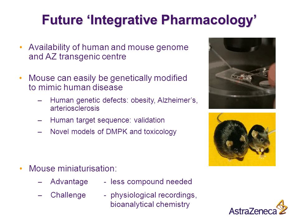A Future Integrative Pharmacology Availability of human and mouse genome and AZ transgenic centre Mouse can easily be genetically modified to mimic human disease –Human genetic defects: obesity, Alzheimers, arteriosclerosis –Human target sequence: validation –Novel models of DMPK and toxicology Mouse miniaturisation: – Advantage- less compound needed – Challenge- physiological recordings, bioanalytical chemistry