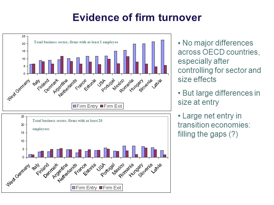 Evidence of firm turnover No major differences across OECD countries, especially after controlling for sector and size effects But large differences in size at entry Large net entry in transition economies: filling the gaps ( ) Total business sector, firms with at least 1 employee Total business sector, firms with at least 20 employees