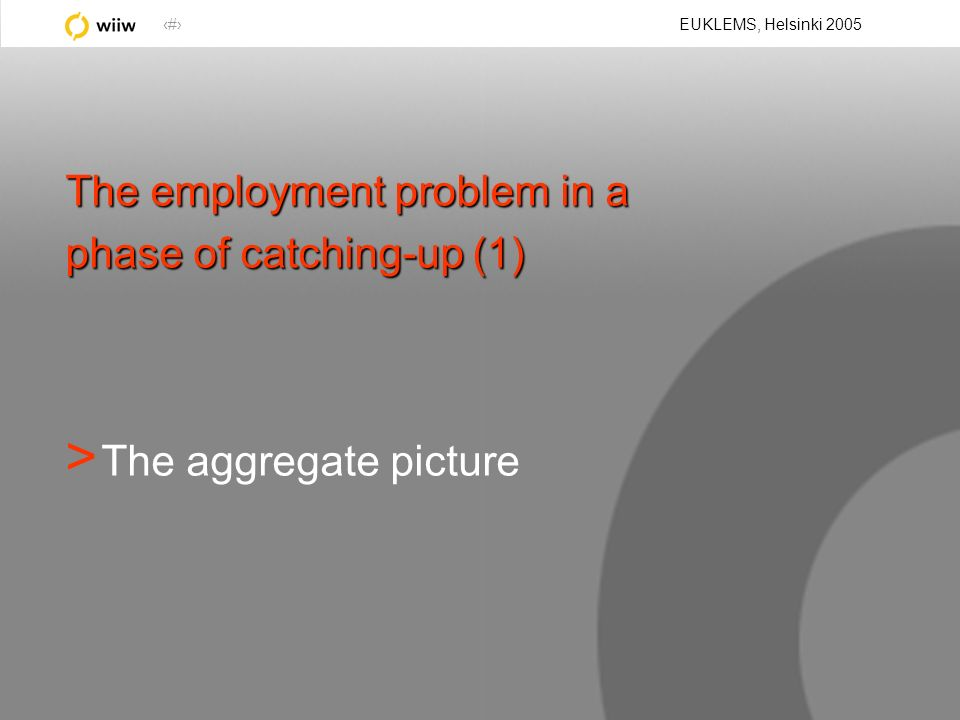 4 EUKLEMS, Helsinki 2005 The employment problem in a phase of catching-up (1) > The aggregate picture