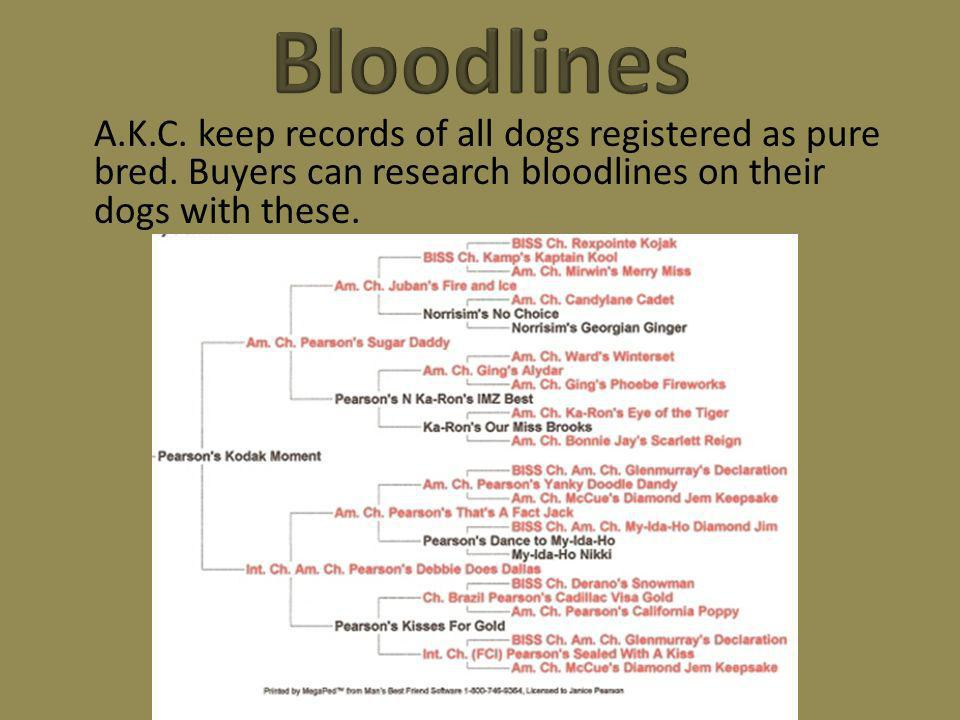 A.K.C. keep records of all dogs registered as pure bred. Buyers can research bloodlines on their dogs with these.