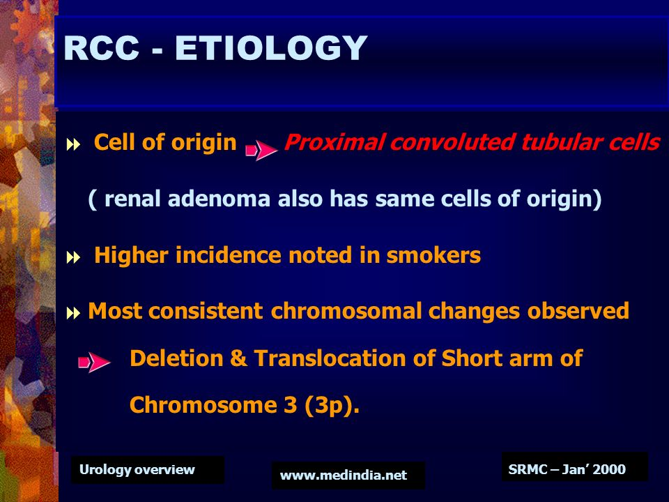Urology overview www.medindia.net SRMC – Jan 2000 RCC - ETIOLOGY Cell of origin Proximal convoluted tubular cells ( renal adenoma also has same cells
