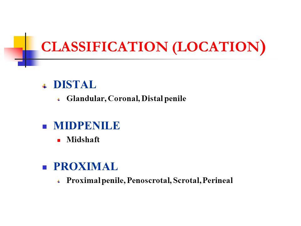 TREATMENT OPTIONS GLANDULAR & SUBCORONAL MAGPI GAP MIP DISTAL PENILE MATHEIU SNODGRASS DEVINE HORTAN MUSTARDEE