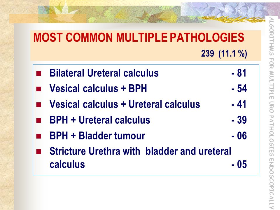ALGORITHMS FOR MULTIPLE URO PATHOLOGIES ENDOSCOPICALLY MOST COMMON MULTIPLE PATHOLOGIES 239 (11.1 %) Bilateral Ureteral calculus- 81 Vesical calculus + BPH- 54 Vesical calculus + Ureteral calculus- 41 BPH + Ureteral calculus- 39 BPH + Bladder tumour- 06 Stricture Urethra with bladder and ureteral calculus- 05