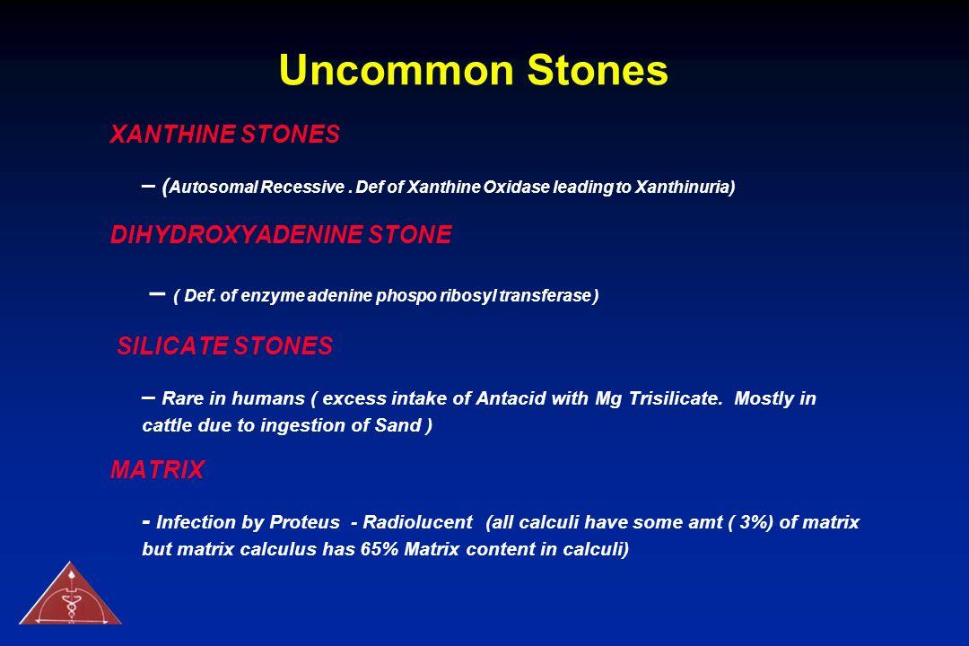 Uncommon Stones XANTHINE STONES – ( Autosomal Recessive. Def of Xanthine Oxidase leading to Xanthinuria) DIHYDROXYADENINE STONE – ( Def. of enzyme ade