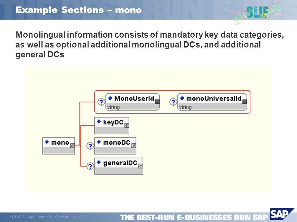 SAP AG 2001, Does it fit?, Christian Lieske 12 Example Sections – mono Monolingual information consists of mandatory key data categories, as well as o