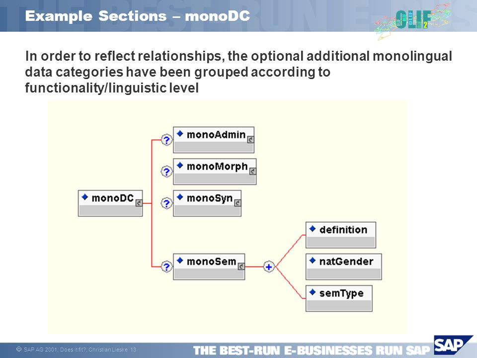SAP AG 2001, Does it fit , Christian Lieske 13 Example Sections – monoDC In order to reflect relationships, the optional additional monolingual data categories have been grouped according to functionality/linguistic level